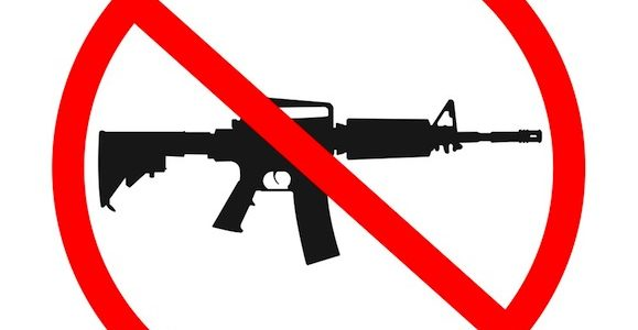 "ALERT! Sarasota Commission to Vote on ""Assault Weapons"" Ban"