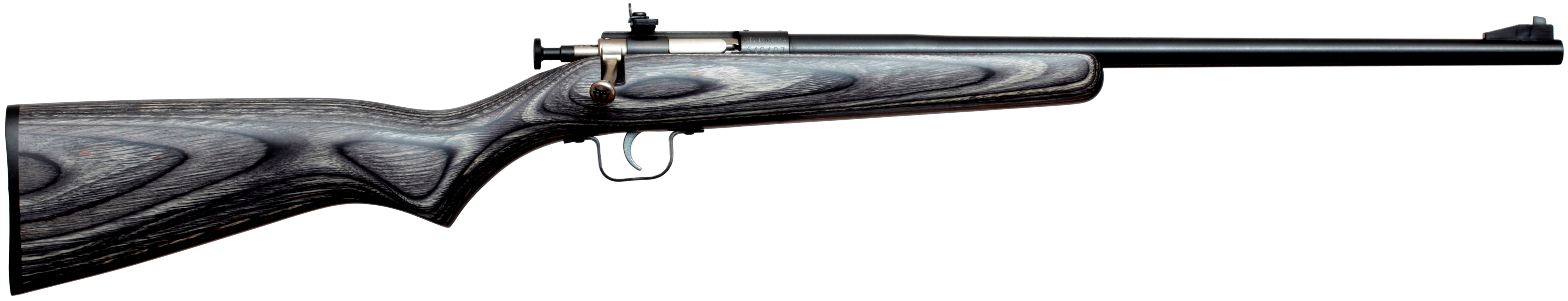 Crickett Youth Rifle 22lr Laminate Florida Gun Supply Get Armed Get Trained Carry Daily