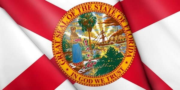 Florida's New Gun Law Update: Campus Carry & More