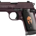 Smith & Wesson Rebate Program with Florida Gun Supply
